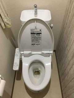 ラバーカップをしてもトイレつまりが直らない【ローポンプで解決】