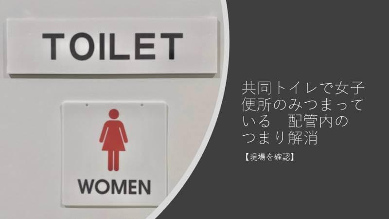 共同トイレで女子便所のみつまっている 配管内のつまり解消【現場を確認】