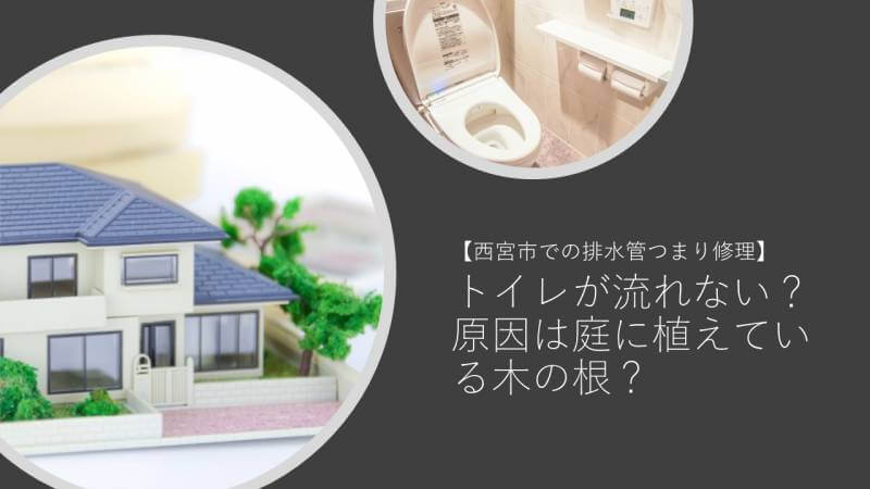 トイレが流れない?原因は庭に植えている木の根?【西宮市での排水管つまり修理】