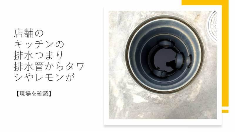 店舗のキッチンの排水つまり 排水管からタワシやレモンが【現場を確認】