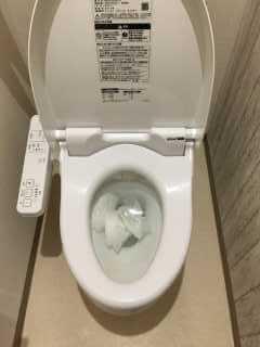 紙が流れないトイレ