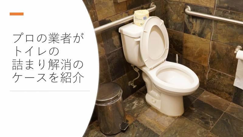 プロの業者がトイレの詰まり解消のケースを紹介