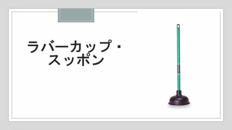 ラバーカップ・スッポン