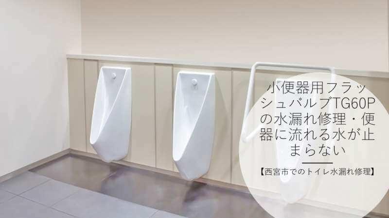 小便器用フラッシュバルブTG60Pの水漏れ修理・便器に流れる水が止まらない【西宮市でのトイレ水漏れ修理】