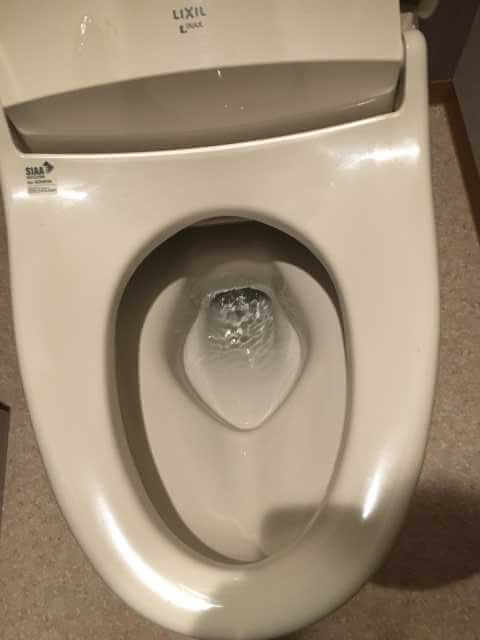 トイレットペーパーが流れた
