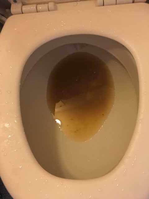 つまっているトイレのアップ