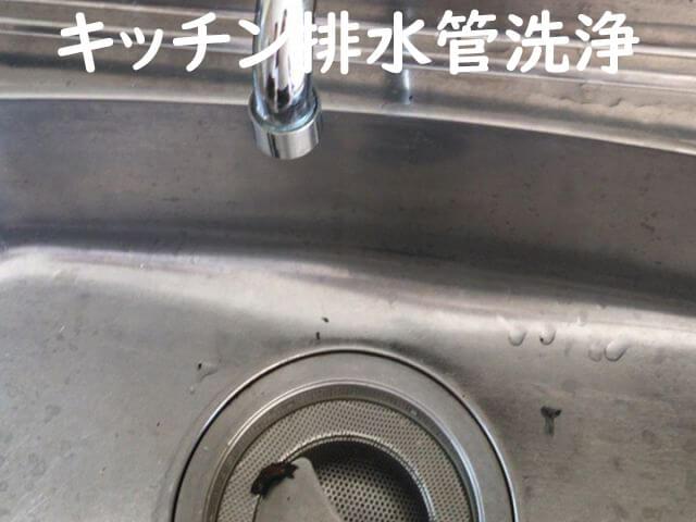 キッチン排水管洗浄
